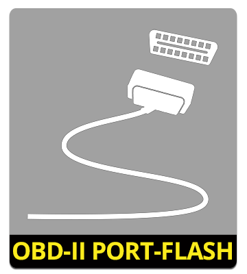 OBD-II Port-Flashing