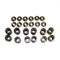 Valve Spring Set with Ti Retainers, 12v VR6