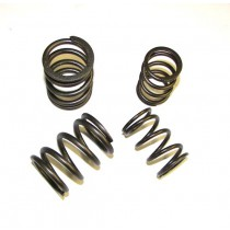 Valve Spring Set, High Rate, Audi 5-cyl 20v