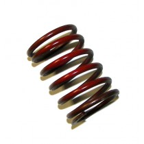 Audi Wastegate Spring, 2.2BAR