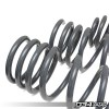 2017 Audi A4/Allroad Lowering Springs | 034-404-1001