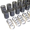 Valve Spring Set with Ti Retainers, 24v VR6