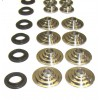Valve Spring Set, 5-valve, High Rate and Lift w/Ti Ret.